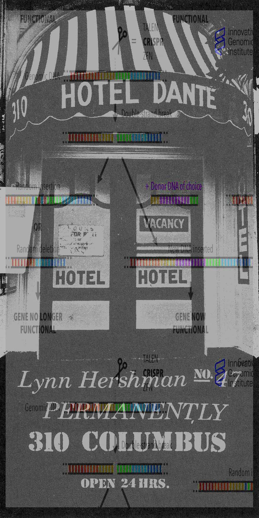 Lynn Hershman Leeson The Novalis Hotel Kw Institute For