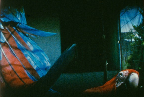 "João Maria Gusmão + Pedro Paiva, Glossolalia (""Good Morning""), 2014, 16mm film, colour, no sound, 7:10 min., produced by Fondazione HangarBicocca, Milan, Courtesy the artists and Galeria Fortes Vilaça, São Paulo; Galeria Graça Brandão, Lisbon; Sies + Höke, Düsseldorf; ZERO..., Milan<br>"