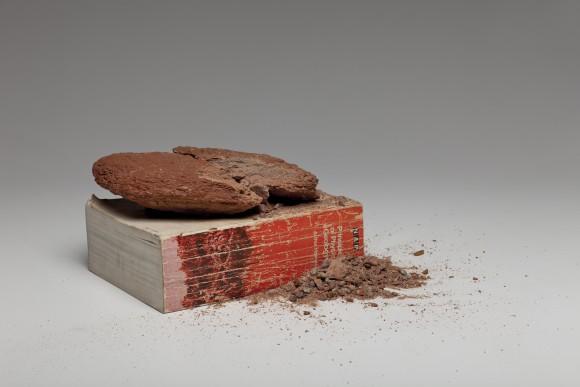 <p>Nicholas Mangan, <em>Matter over Mined</em>, 2012, Courtesy the artist; Sutton Gallery, Melbourne; Hopkinson Mossman, Auckland; and LABOR, Mexico City, D.F.</p>